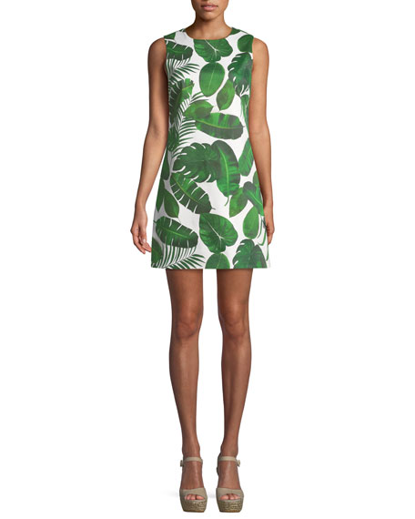 Coley Sleeveless Palm-Leaf Print A-Line Dress