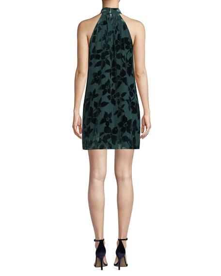 d07dcfec82fc Trina Turk Spree Velvet Burnout Halter Dress | Neiman Marcus