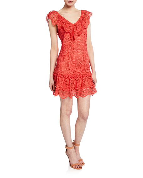 Image 1 of 2: Saylor Fern V-Neck Sleeveless Mini Lace Dress