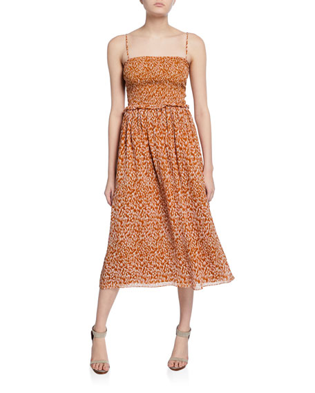 Joie Ambroise Printed Silk Midi Dress