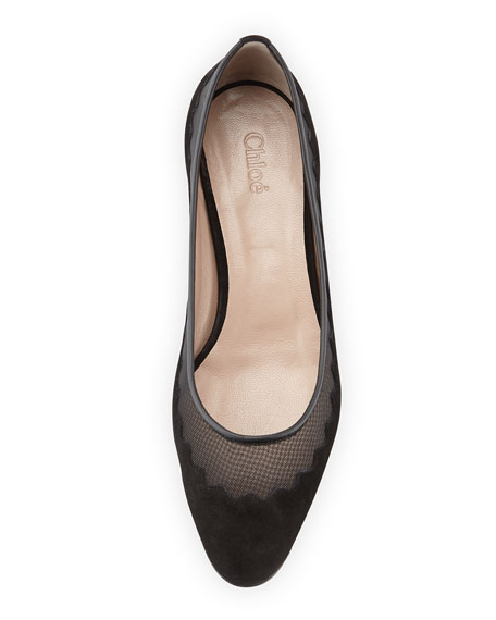 Suede Tulle-Scalloped Ballet Flat, Black
