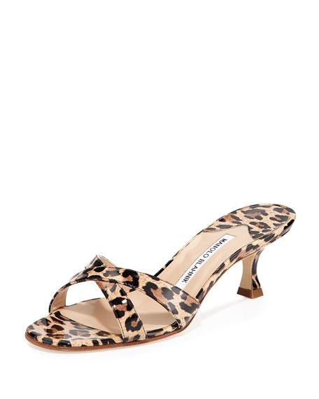 Manolo Blahnik Calamu Patent Slide Sandal, Leopard