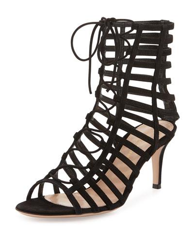 Lace-Up Gladiator Sandal, Black