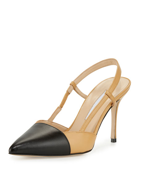 Manolo Blahnik Evocity Two-Tone Pointed-Toe Pump, Black/Beige