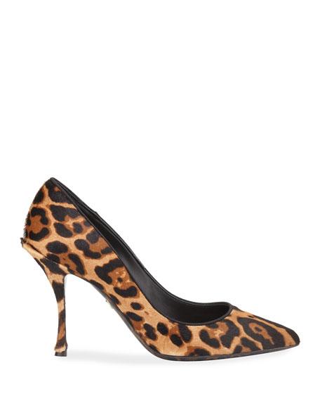 Dolce & Gabbana Leopard-Print Pointed Pumps