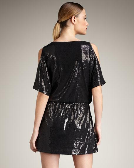 Paillard Sequined Dress
