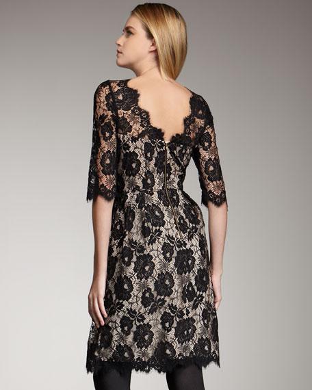 Celia Lace Dress