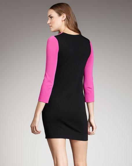 Aina Colorblock Dress