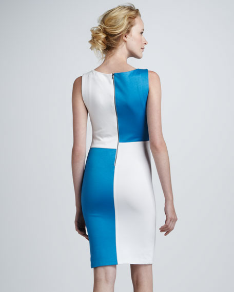 Carina Sleeveless Colorblock Dress