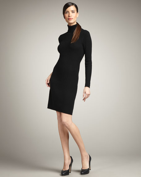 Ribbed Cashmere Turtleneck Dress