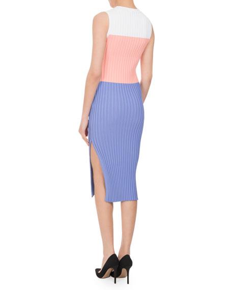 Mariana Ribbed Colorblock Sheath Dress
