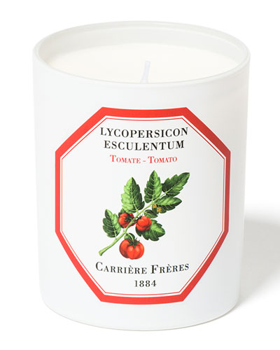Tomato Candle  6.5 oz. / 184 g