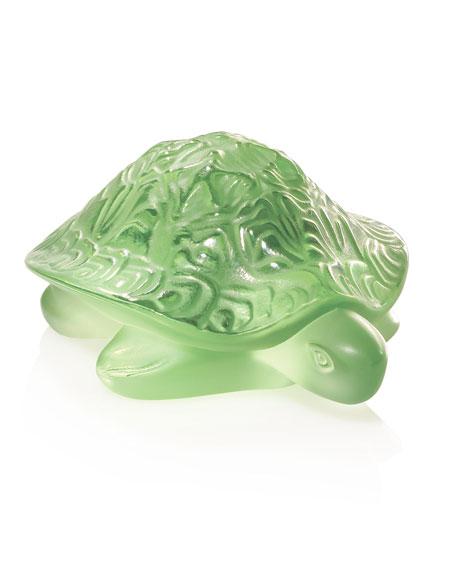 Sidonie Turtle