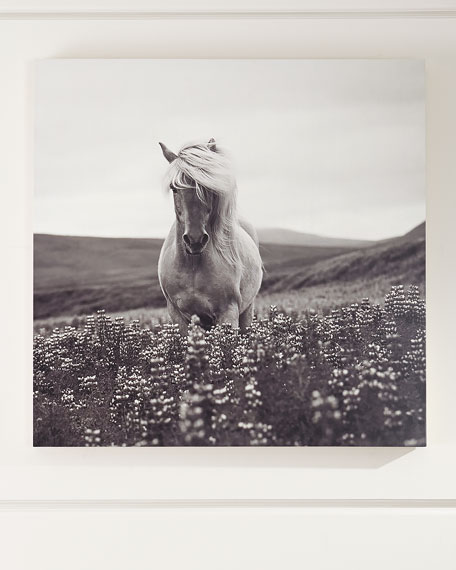 """Intensity"" Photography Art Print on Maple Box"