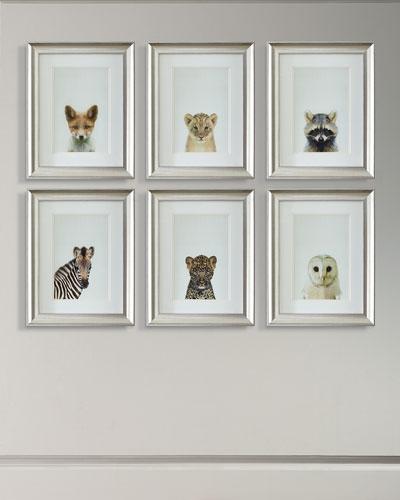 Framed Baby Animal Photography Print Framed Art