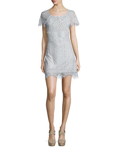 Lyla Lace Mini Dress, Silver