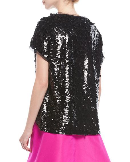 Besant Short-Sleeve Sequin Top