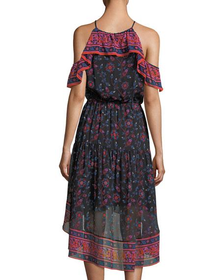 Poi Sleeveless Floral-Print High-Low Silk Midi Dress