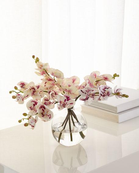 NDI Orchid Phalaenopsis Glass Bubble