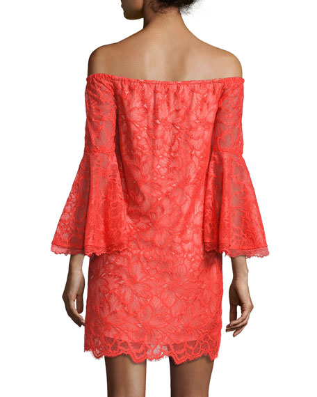 Lace Off-the-Shoulder Bell-Sleeve Shift Dress