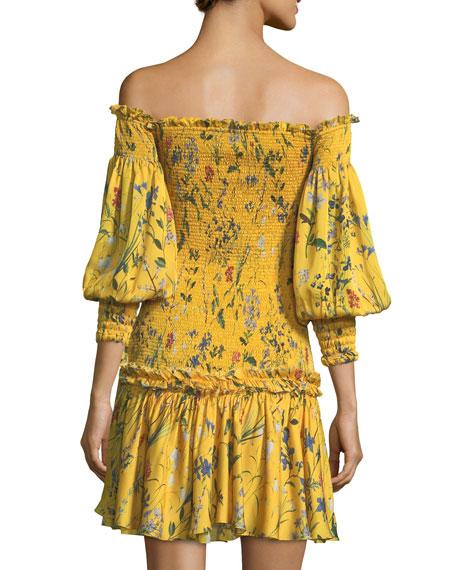 Gemina Off-the-Shoulder Floral-Print Dress