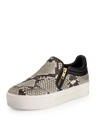 Jordy Snake-Print Sneaker, Black