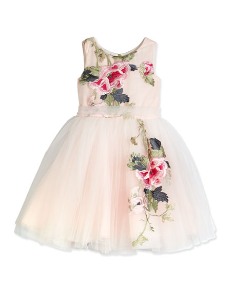 Zoe Sleeveless Embroidered Tulle Dress, Pink/Multicolor, Size