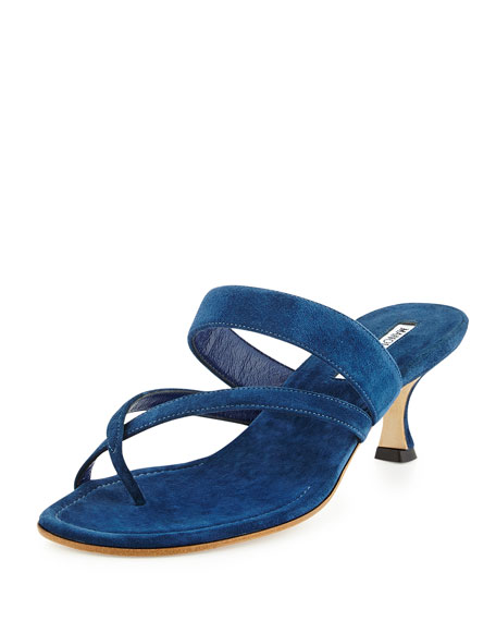 Manolo Blahnik Susa Suede Low-Heel Thong Sandal, Blue