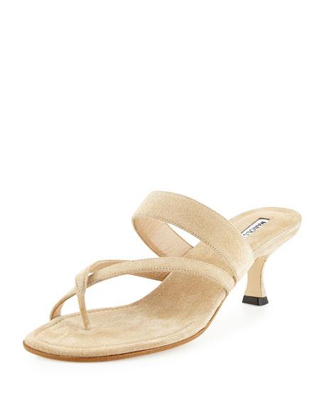 Manolo Blahnik Susa Suede Low-Heel Thong Sandal, Beige