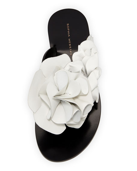 Jumbo Lilico Flower Flat Slide Sandal