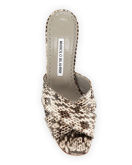 Manolo Blahnik Otawi Crisscross Snakeskin Slide Sandals