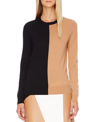 Colorblock Wool Sweater, Leather Skirt & Carmela Clear-Heel Wedge