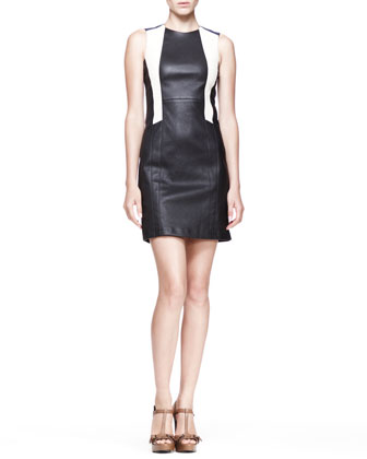 Tate Colorblock Leather Dress