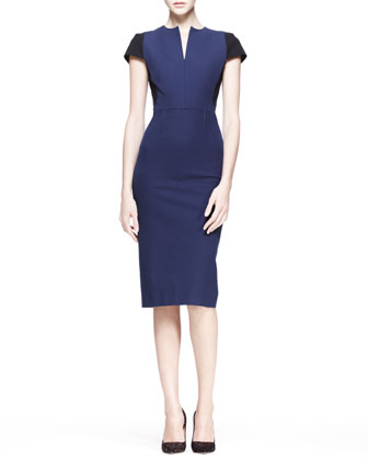 Delphinus Two-Tone Sheath Dress