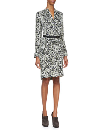 Long-Sleeve Animal-Print Silk Dress, Nile Blue/Multi