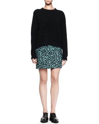 Wool/Cashmere Crew Sweater and Printed Flocked Mini Skirt