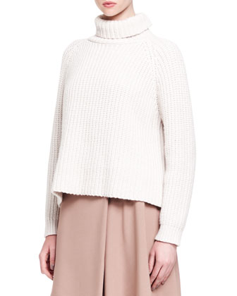 Ribbed Paillette Cylinder Cashmere Turtleneck
