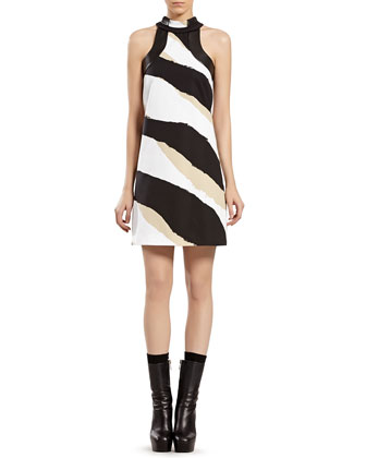 Zebra Dress with Leather Trim
