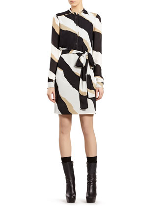 Zebra Print Silk Georgette Shirtdress