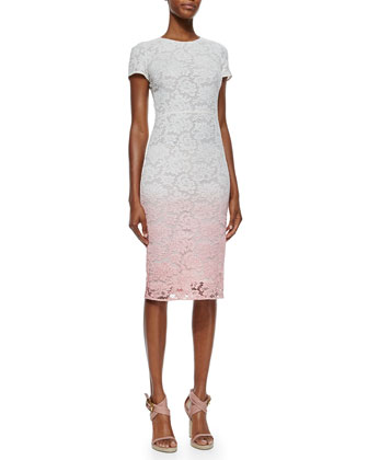 Degrade Lace Sheath Dress