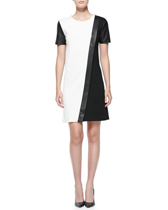 Milano Knit Colorblock Dress with Leather