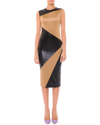 Sleeveless Colorblock Matte & Shine Dress