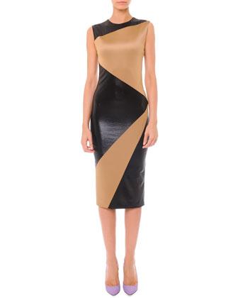 Sleeveless Colorblock Matte & Shine Dress