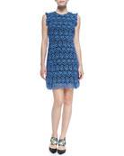 Rainie Sleeveless Lace Shift Dress