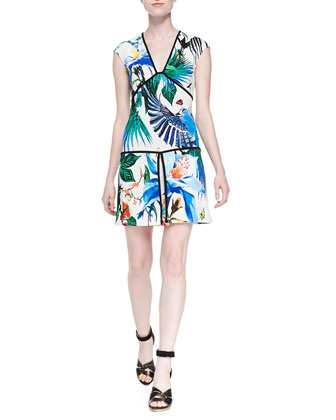 Alize-Print Piped Drop-Waist Dress