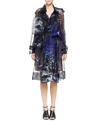 Printed Silk Organza Trench Coat & Pearly Pierced Washed Cady Sheath Dress ...