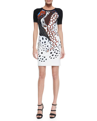 Ranveli Mixed Dotted-Print Sheath Dress, White/Brown