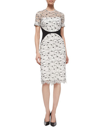 Short-Sleeve Lace Sheath Dress, Ivory/Black