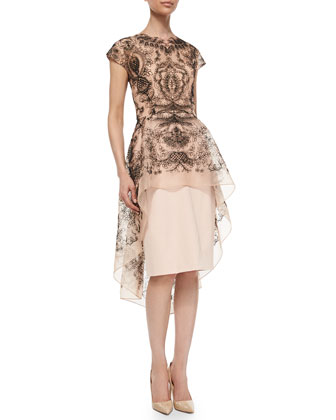 Embroidered Lace Peplum Dress, Blush/Black