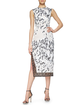 Cloud Jacquard Lace-Trimmed Dress